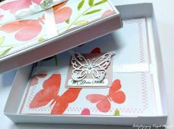 Motyl w pudełku